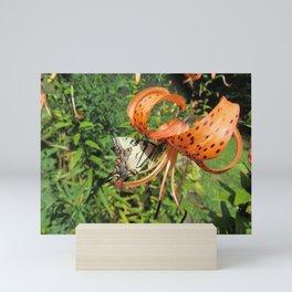 Tiger Lily Butterfly Mini Art Print