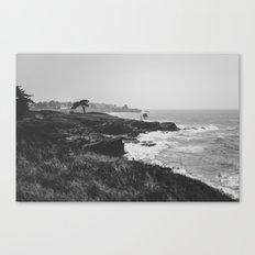 The wild landscape Canvas Print