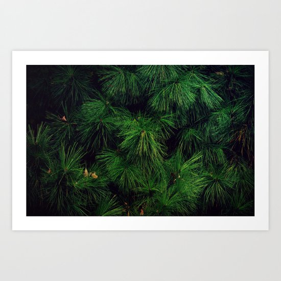 The Stronger the Wind, the Stronger the Tree Art Print