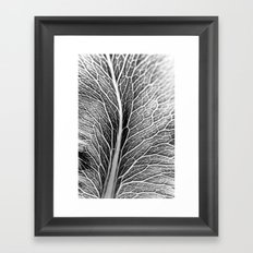 Black And White Leaf Framed Art Print