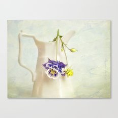still life with Aquilegia Canvas Print