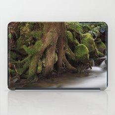 Paradise Creek II iPad Case