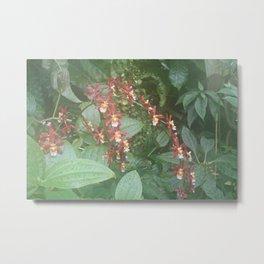 orchidism Metal Print