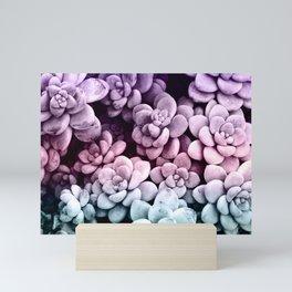 Dreamy Succulents #1 #pastel #decor #art #society6 Mini Art Print