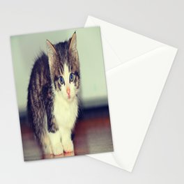 Milo The Kitty Stationery Cards