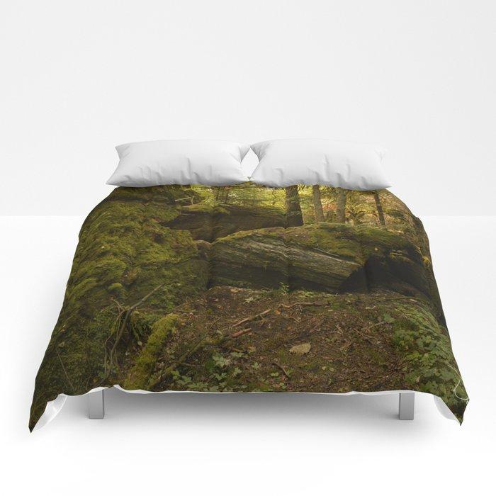 Believe Comforters