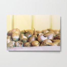 Garlics Metal Print