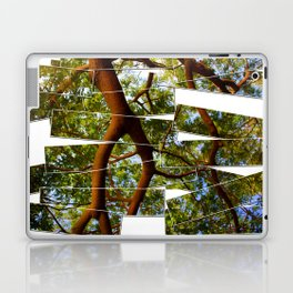 Origins Laptop & iPad Skin