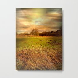 Windblown Field Metal Print