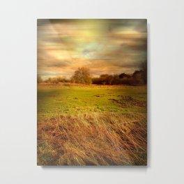 Windblown Field Metal Print