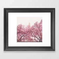 Central Park - Cherry Blossoms Framed Art Print