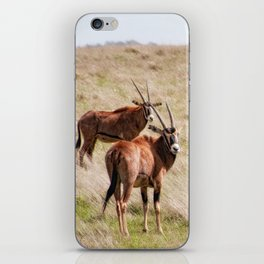 Wide open spaces iPhone Skin
