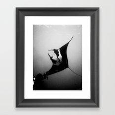 Evading Devil Fish Framed Art Print