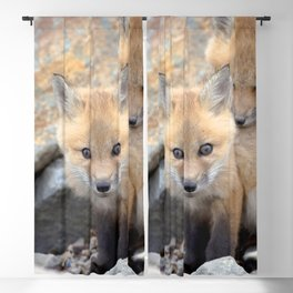 Watercolor Fox, Red Fox 49, Union Reservoir, Boulder County Blackout Curtain