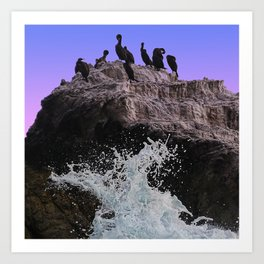 Out Of Danger: Bird Rock Art Print