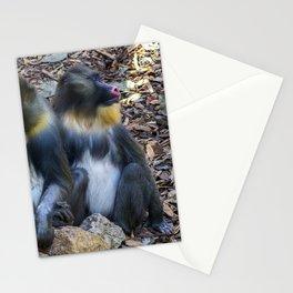 Monkeys - Mandrill Stationery Cards