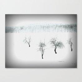 Bare bones in Winter Canvas Print
