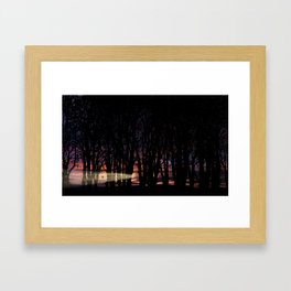 Sunrise in the Trump Forest .2 Framed Art Print