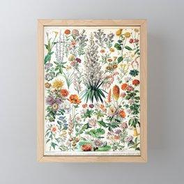 Adolphe Millot - Fleurs B - French vintage poster Framed Mini Art Print