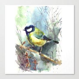 Watercolor aquarelle titmouse bird Canvas Print