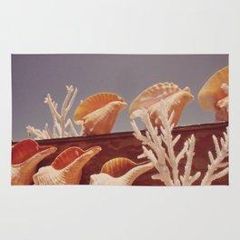 Souvenir Seashells Rug