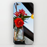outdoor iPhone & iPod Skins featuring Outdoor Decor by Kim Ramage