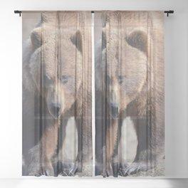 Alaskan Grizzly Bear - Spring Sheer Curtain