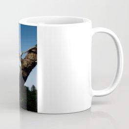 Nauset Lighthouse photography Coffee Mug