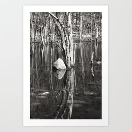 Water Mirror P2882 Art Print