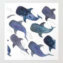 Whale Shark Pattern Party by jesschampagne