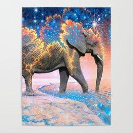 Elephant Drinking Soma Poster