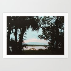 Cumberland Island Art Print