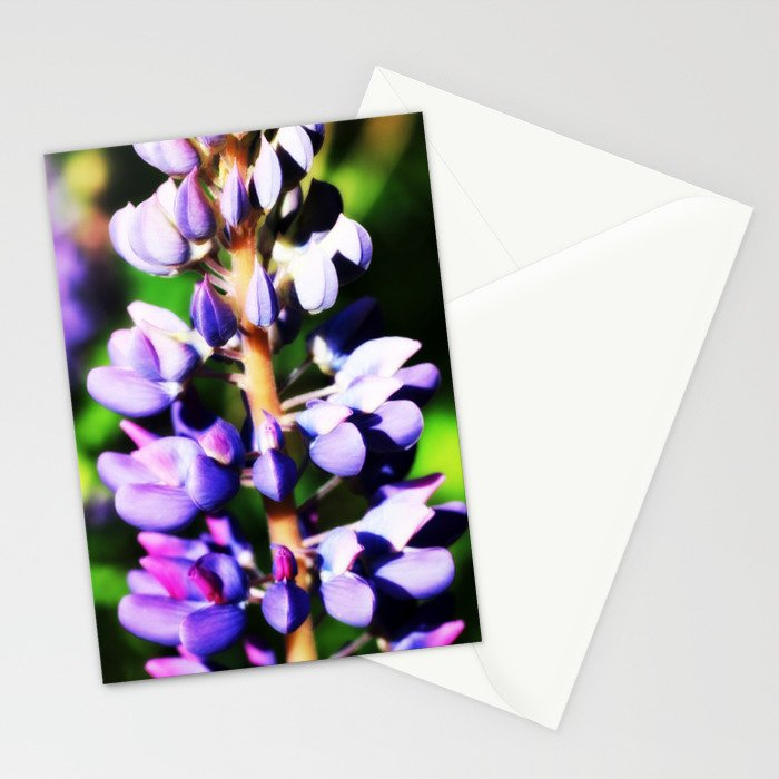 Lupine close up Stationery Cards
