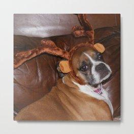 Lucy the Reindeer Metal Print