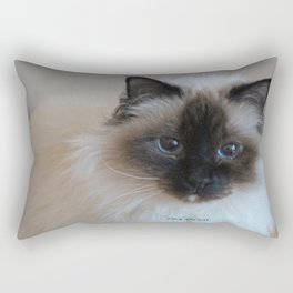 Lucy The Cat 1 Rectangular Pillow