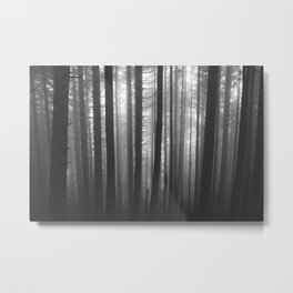 Into the Mist - BW Metal Print