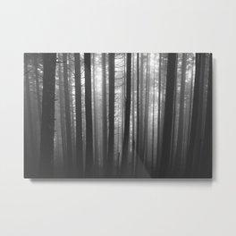 Into the Mist - BW Metal Print