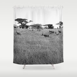 Impala in the grass Shower Curtain
