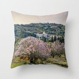Algarve village in Spring Throw Pillow