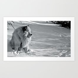 Little Polar Bear Art Print