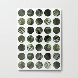 Circles and tropical Metal Print