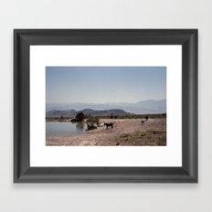 The Waterhole Framed Art Print