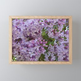 Lilac ~ Periwinkle Framed Mini Art Print