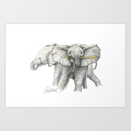 Baby Elephants! Art Print