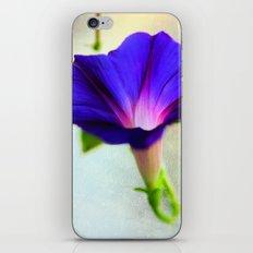 Rising to the Sun iPhone & iPod Skin