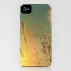 Last Sun iPhone (4, 4s) Slim Case