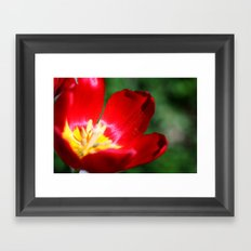 Its In The Details Framed Art Print