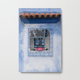 Window Wash Metal Print