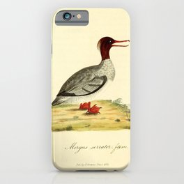 Red breasted Merganser 214 iPhone Case