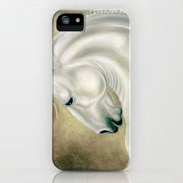 Beautiful Lusitano Horse iPhone Case